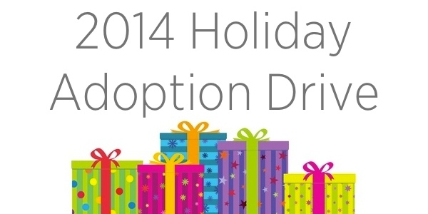 2014-holiday-adoption-fb-share-image